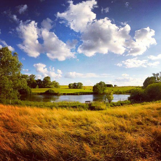 Dieses Bild hat ein leeres alt-Attribut; sein Dateiname ist landschaftsbilder-bluetenberg-brandenburg.jpg.
